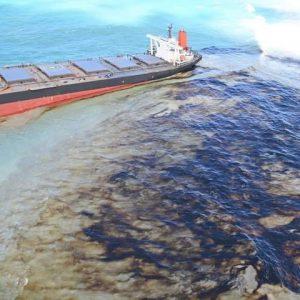 モーリシャスでの日本貨物船座礁・石油流出事故ポータルサイト