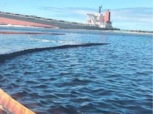 【報告】ウェビナー「わかしお」座礁から2ヶ月 モーリシャスの今と市民連携